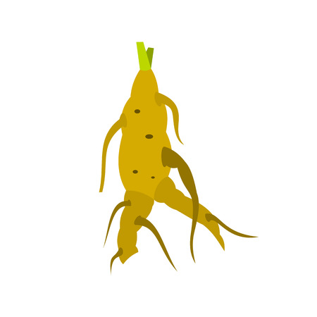 Ginseng rot icon in flat style on a white background Illustration