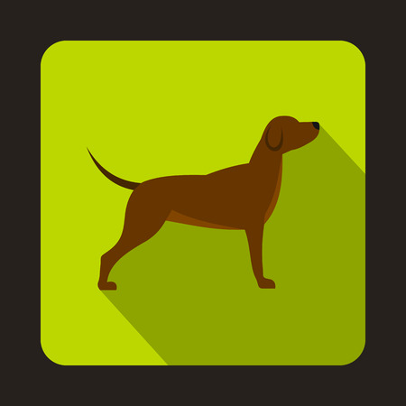 hunting dog: Hunting dog icon in flat style with long shadow