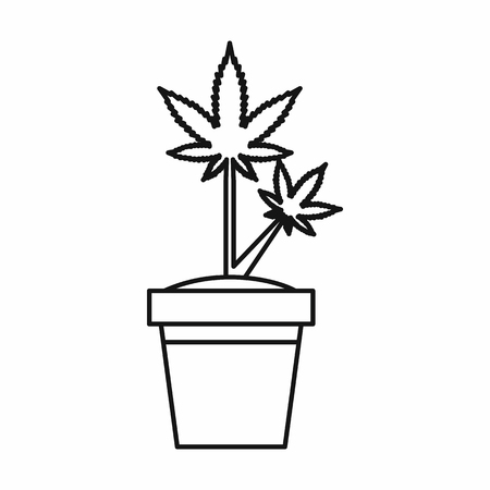 Marijuana plant in pot icon in outline style isolated on white background. Vector illustration
