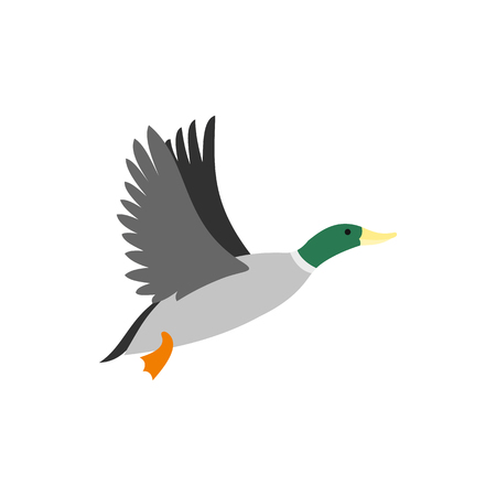 waterfowl: Duck icon in flat style isolated on white background. Waterfowl symbol vector illustration