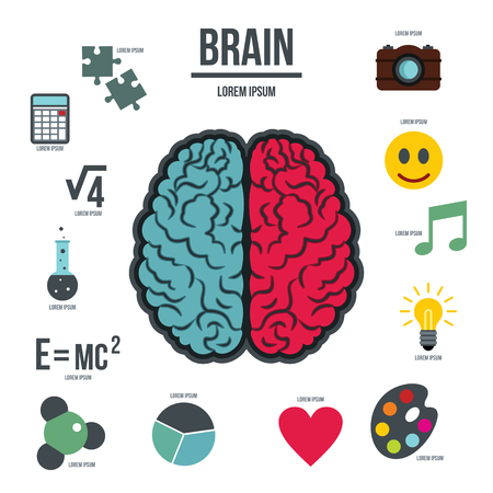 analytical chemistry: Human brain infographics set in flat style. Brain function set collection vector illustration Illustration