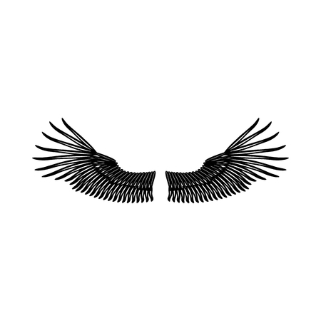 ornithology: Wings icon in simple style on a white background vector illustration