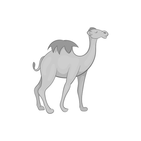 humped: Camel icon in black monochrome style isolated on white background. Animal symbol vector illustration