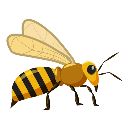 antennae: Bee icon in cartoon style isolated on white background. Insects symbol vector illustration