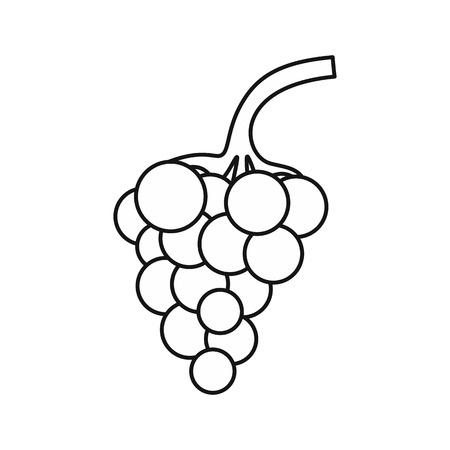 Grappe d'icône de raisins dans le style de contour isolé sur fond blanc. Illustration vectorielle de fruits symbole