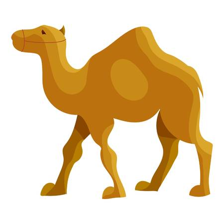 zoo dry: Camel icon in cartoon style isolated on white background vector illustration Illustration