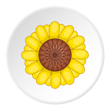 artoon: Sunflower icon. artoon illustration of sunflower vector icon for web