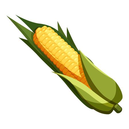 corny: Corn icon. Cartoon illustration of corn vector icon for web Illustration