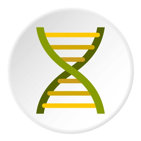 Human dna icon. Flat illustration of dna vector icon for web design