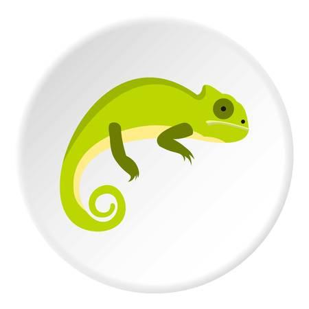 vertebrate: Green iguana icon. Flat illustration of green iguana vector icon for web