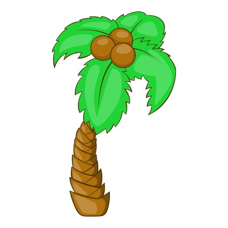 date fruit: Palm icon. Cartoon illustration of palm vector icon for web