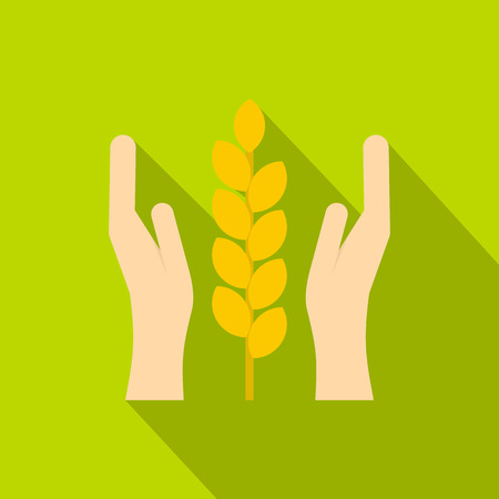 Hands and ear of wheat icon. Flat illustration of hands and ear of wheat vector icon for web isolated on green background Illustration