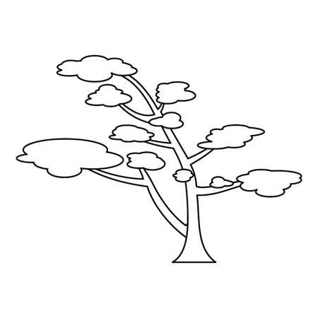 Cedar icoon. Schets illustratie van cederhout vector pictogram voor web