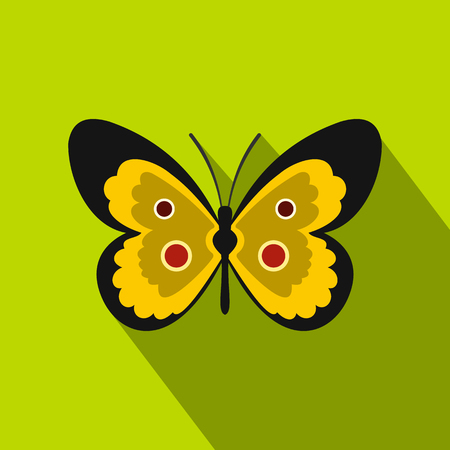 Yellow butterfly icon. Flat illustration of butterfly vector icon for web isolated on lime background Illustration