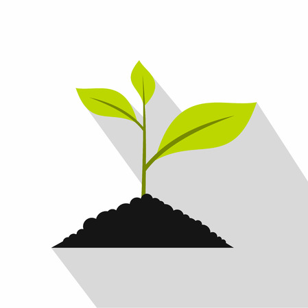 germinate: Green seedling in soil pile icon. Flat illustration of green seedling seedling in soil pile vector icon for web
