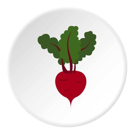 turnip: Turnip icon. Flat illustration of turnip vector icon for web