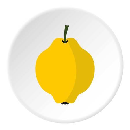 membrillo: icono de membrillo. ilustración plana del icono de membrillo vectorial para la web