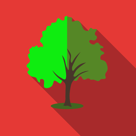 willow tree: Tree with green crown icon. Flat illustration of willow tree vector icon for web
