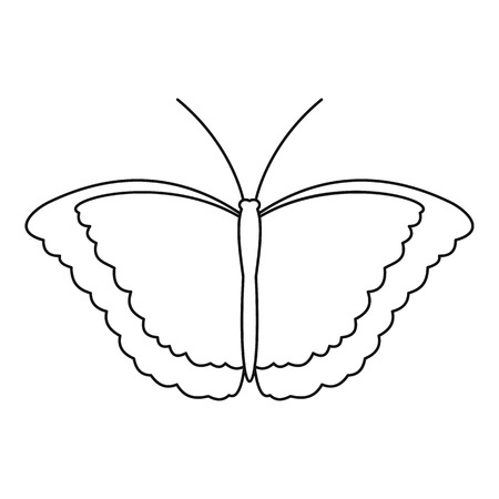 mormon: Butterfly scoop icon. Outline illustration of butterfly scoop vector icon for web Illustration
