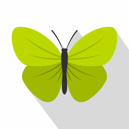 Insect butterfly with small wings icon. Flat illustration of insect butterfly with small wings vector icon for web Illustration