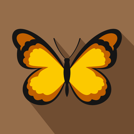 Insect butterfly with pattern on wings icon. Flat illustration of insect butterfly with pattern on wings vector icon for web