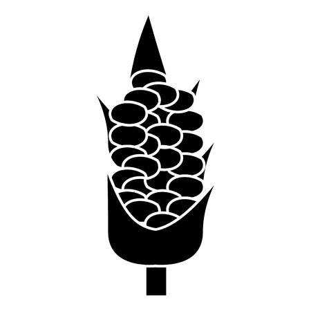 sweetcorn: Corn on the cob icon. Simple illustration of corn on the cob vector icon for web