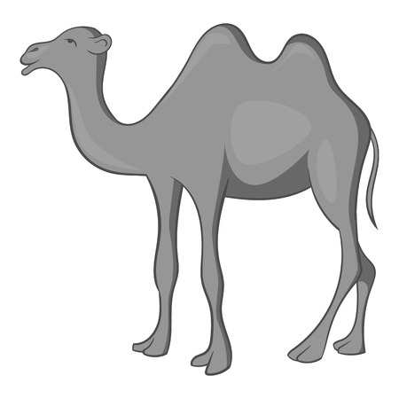 Camel icon. Gray monochrome illustration of camel vector icon for web design Illustration