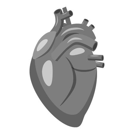 Human heart icon. Gray monochrome illustration of human heart vector icon for web Illustration