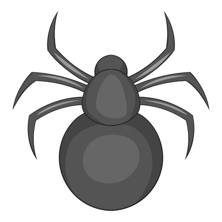 spider web: Spider icon. Cartoon illustration of spider vector icon for web Illustration