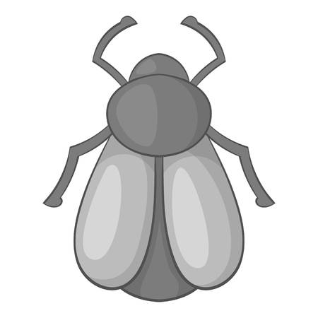 Maybug icon. Cartoon illustration of maybug vector icon for web Illustration