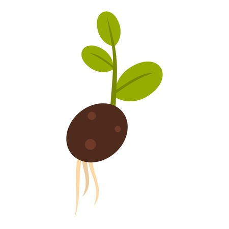 sprout: Sprout potatoes icon. Flat illustration of sprout potatoes vector icon for web Illustration