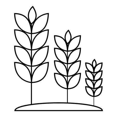 Wheat germ icon. Outline illustration of wheat germ vector icon for web Vettoriali