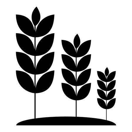 Wheat germ icon. Simple illustration of wheat germ vector icon for web
