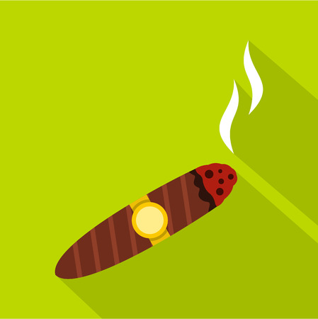 smoldering: Brown cigar icon. Flat illustration of cigar vector icon for web isolated on green background