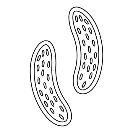epithelial: Epithelial cell icon. Outline illustration of epithelial cell vector icon for web