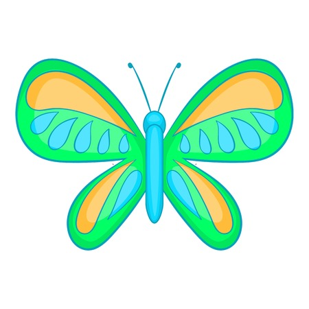 Butterfly with small wings icon. Cartoon illustration of butterfly vector icon for web design
