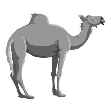 humped: Camel icon. Gray monochrome illustration of camel vector icon for web