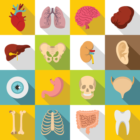 Human organs icons set. Flat illustration of 16 human organs vector icons for web Illustration