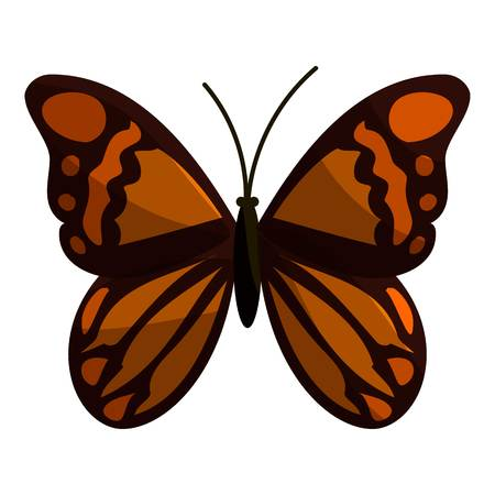 mormon: Brown butterfly icon. Cartoon illustration of brown butterfly vector icon for web