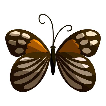 mormon: Spotted butterfly icon. Cartoon illustration of spotted butterfly vector icon for web