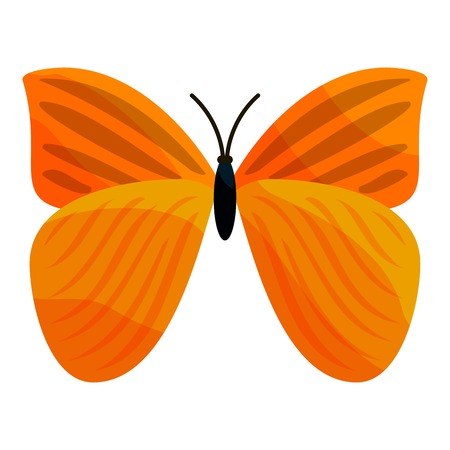 Yellow butterfly icon. Cartoon illustration of yellow butterfly vector icon for web