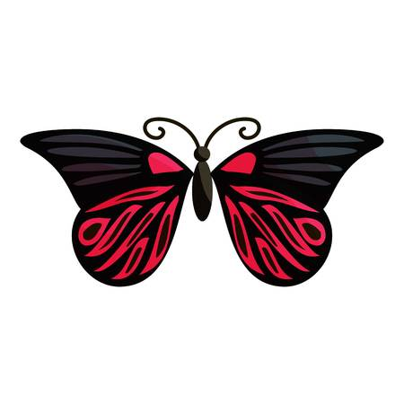 mormon: Red butterfly icon. Cartoon illustration of red butterfly vector icon for web