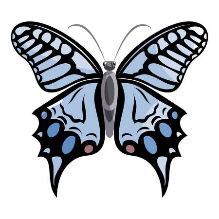 mormon: Light butterfly icon. Cartoon illustration of light butterfly vector icon for web Illustration