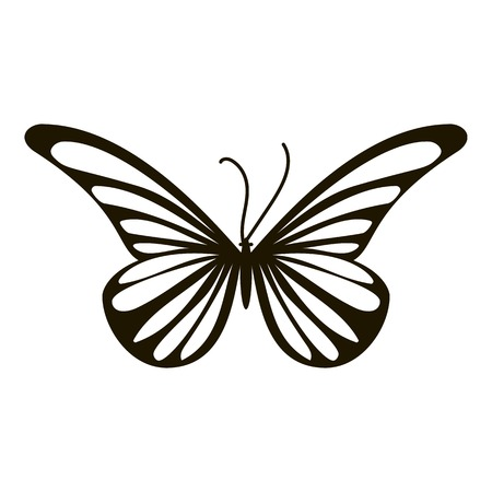 Moth butterfly icon. Simple illustration of moth butterfly vector icon for web Illustration