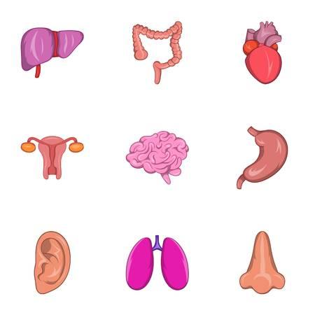 bile: Human organs icons set. Cartoon illustration of 9 human organs vector icons for web