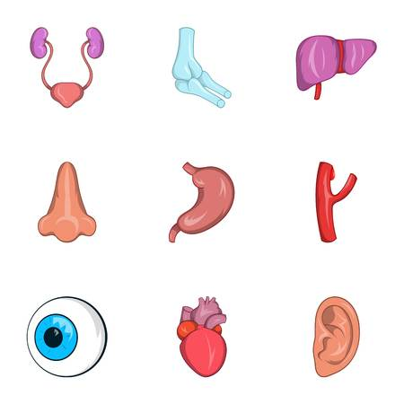 bile: Structure of body icons set. Cartoon illustration of 9 structure of body vector icons for web