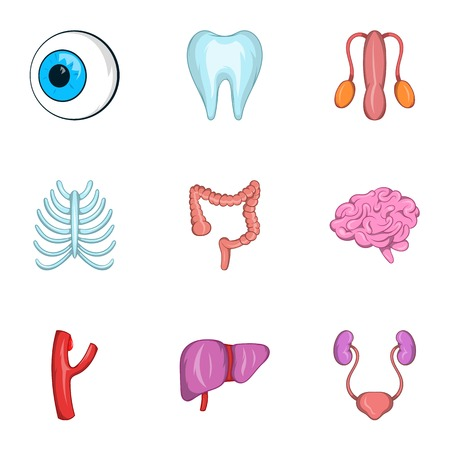 hepatic portal vein: Structure of human icons set. Cartoon illustration of 9 structure of human vector icons for web