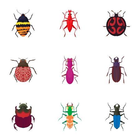 coleoptera: Order coleoptera icons set. Cartoon illustration of 9 order coleoptera vector icons for web Illustration