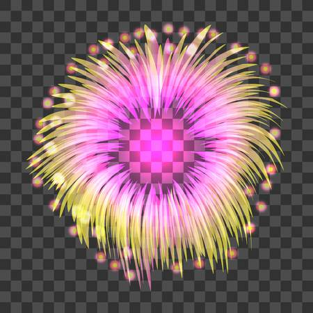 Colored firework icon. Realistic illustration of colored firework vector icon for web