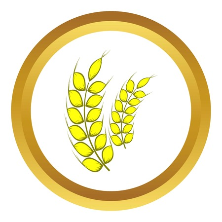 stalks: Two stalks of ripe barley vector icon in golden circle, cartoon style isolated on white background